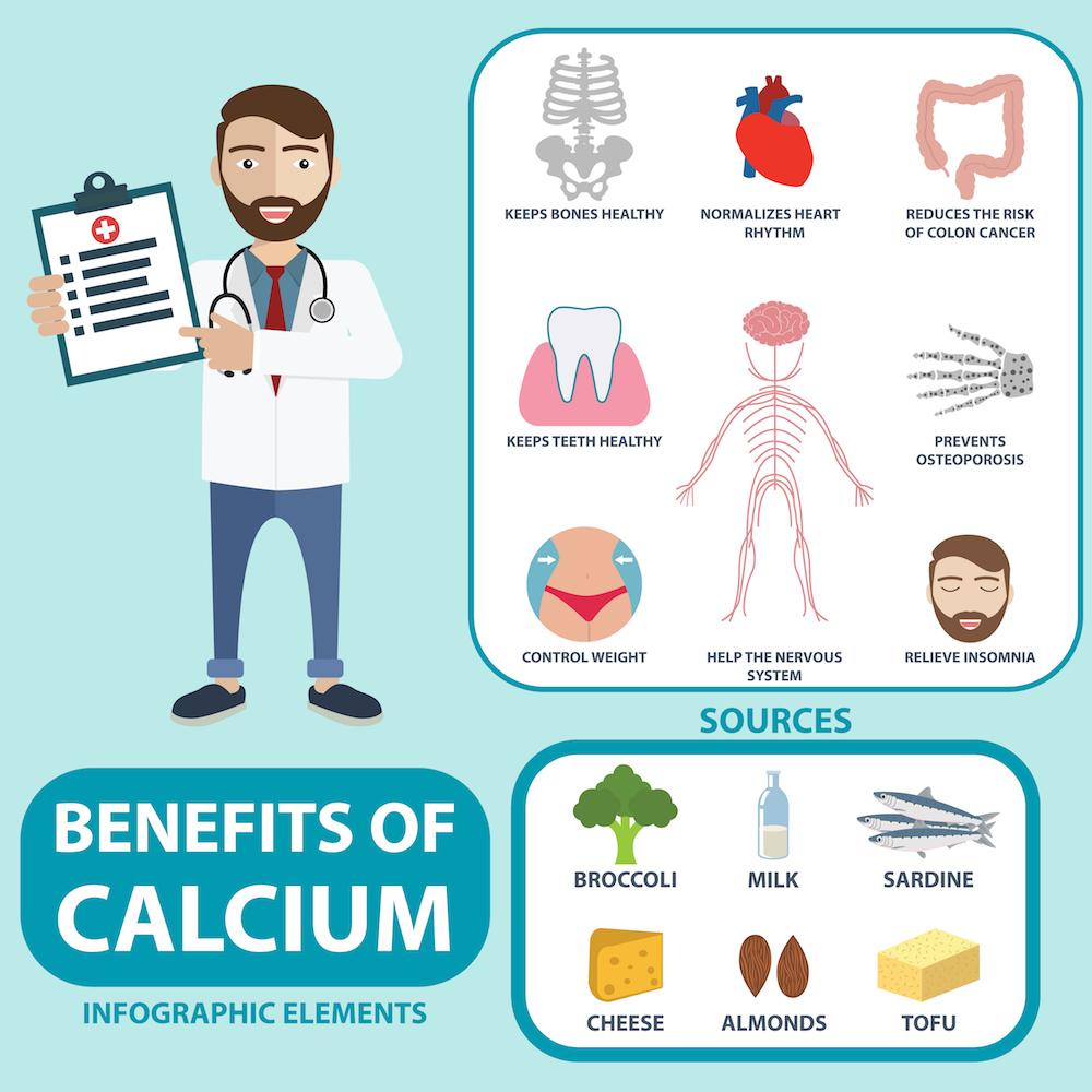 Calcium's Function in Your Body